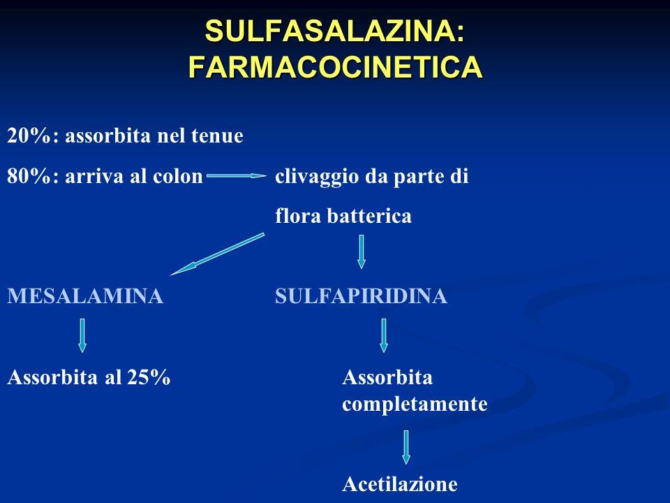 SULFASALAZINA: FARMACOCINETICA