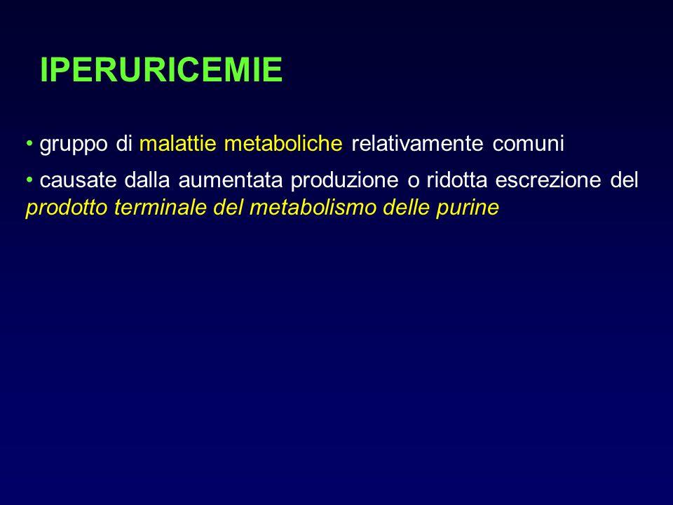 IPERURICEMIE gruppo di malattie metaboliche relativamente comuni