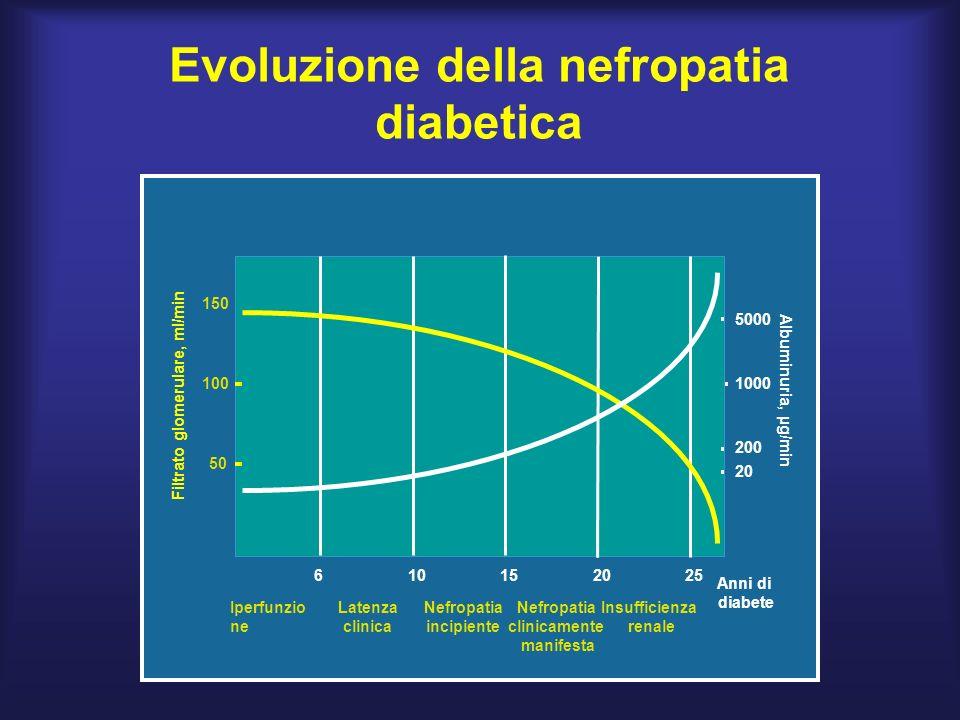 Evoluzione della nefropatia diabetica