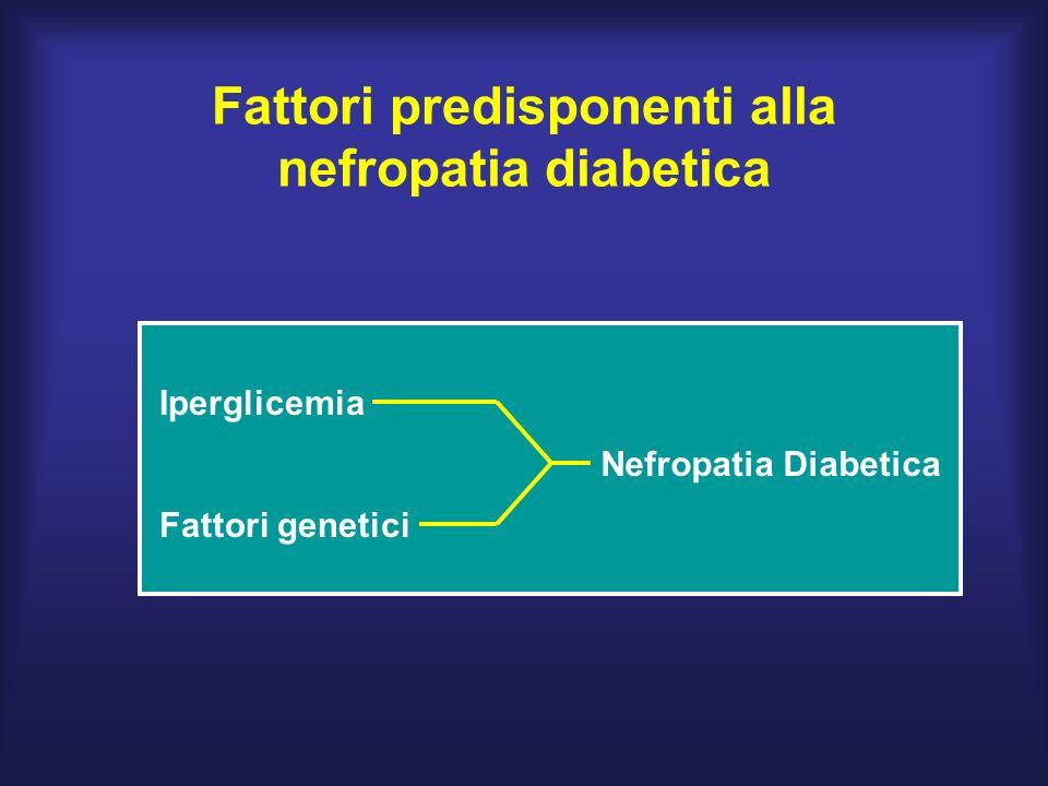 Fattori predisponenti alla nefropatia diabetica