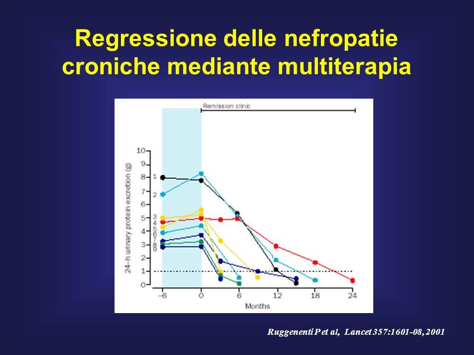 Regressione delle nefropatie croniche mediante multiterapia