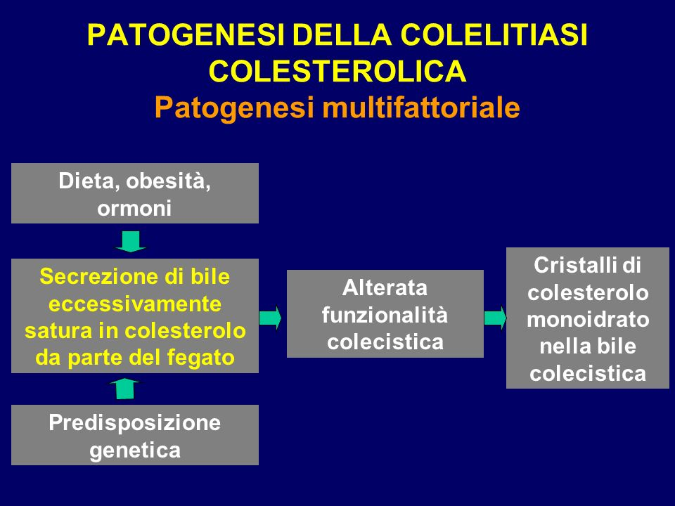 PATOGENESI DELLA COLELITIASI COLESTEROLICA Patogenesi multifattoriale