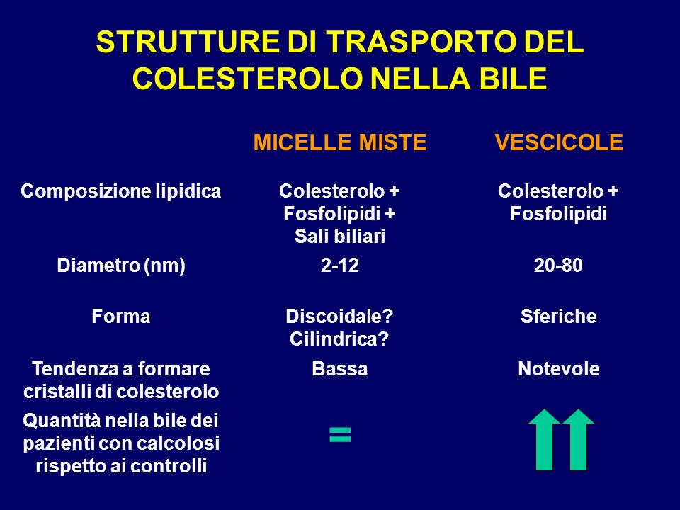 STRUTTURE DI TRASPORTO DEL COLESTEROLO NELLA BILE