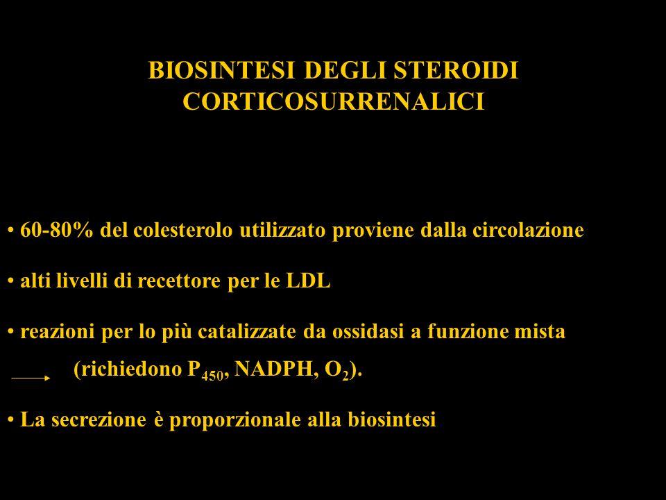 BIOSINTESI DEGLI STEROIDI CORTICOSURRENALICI