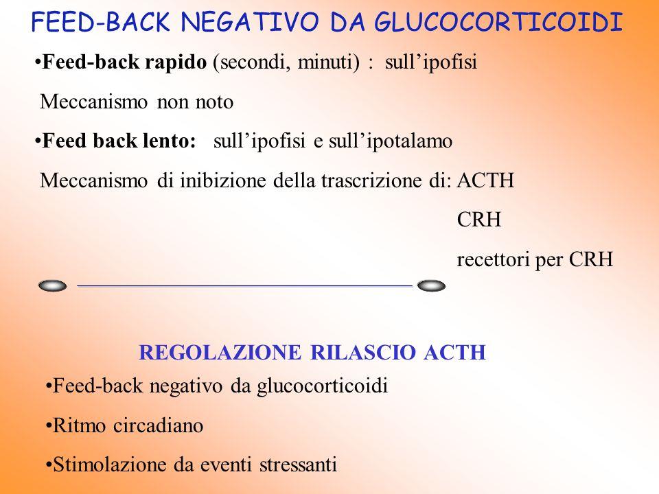 FEED-BACK NEGATIVO DA GLUCOCORTICOIDI