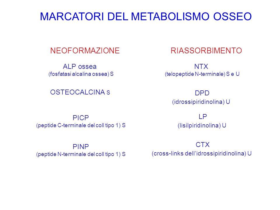 MARCATORI DEL METABOLISMO OSSEO
