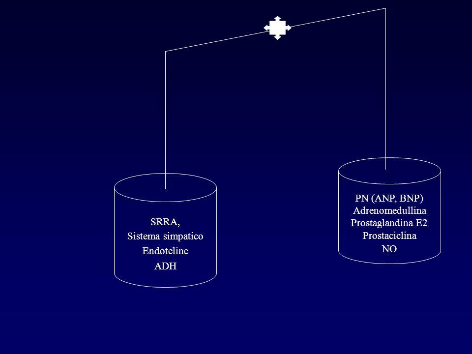 PN (ANP, BNP) Adrenomedullina. Prostaglandina E2. Prostaciclina. NO. SRRA, Sistema simpatico. Endoteline.