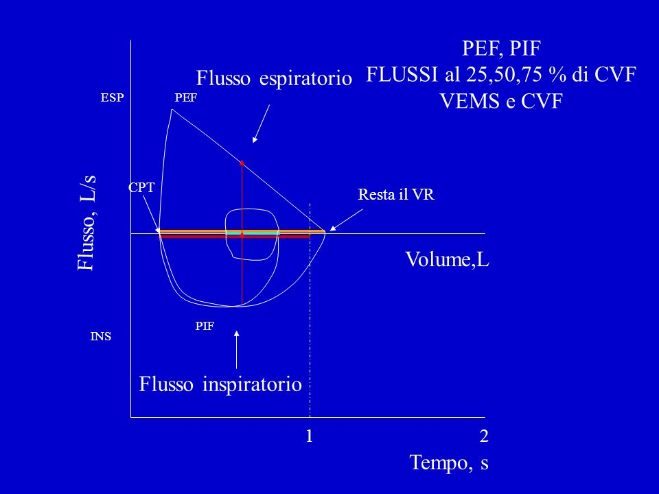 PEF, PIF FLUSSI al 25,50,75 % di CVF VEMS e CVF Flusso espiratorio