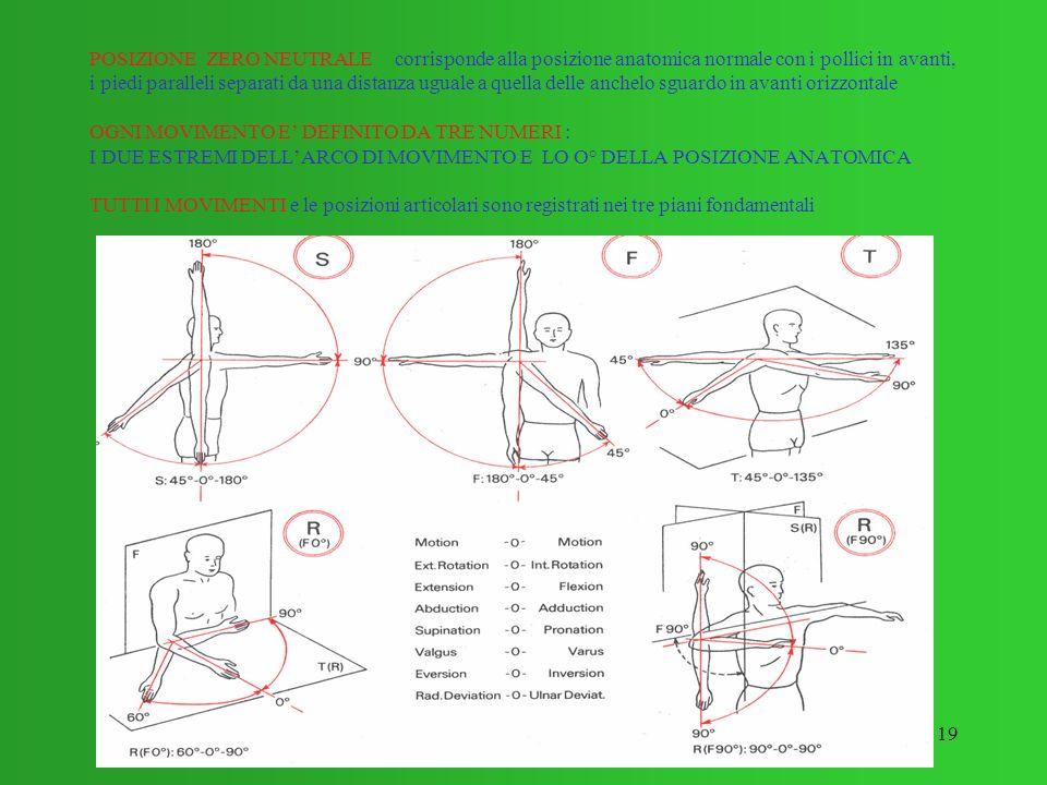 POSIZIONE ZERO NEUTRALE corrisponde alla posizione anatomica normale con i pollici in avanti, i piedi paralleli separati da una distanza uguale a quella delle anchelo sguardo in avanti orizzontale OGNI MOVIMENTO E' DEFINITO DA TRE NUMERI : I DUE ESTREMI DELL'ARCO DI MOVIMENTO E LO O° DELLA POSIZIONE ANATOMICA TUTTI I MOVIMENTI e le posizioni articolari sono registrati nei tre piani fondamentali