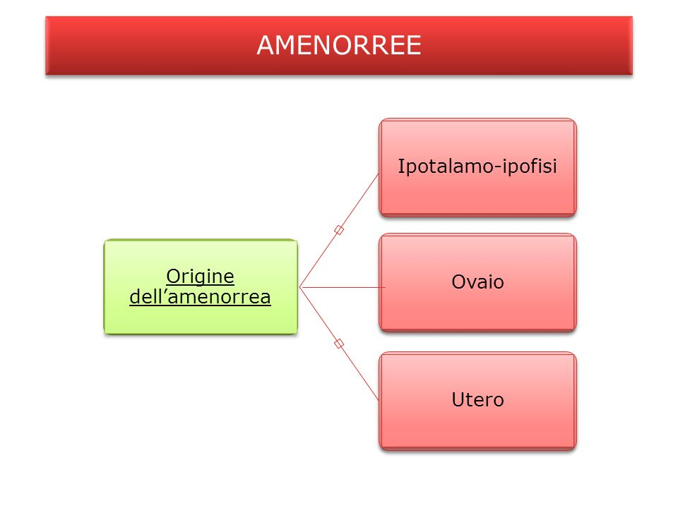 Origine dell'amenorrea