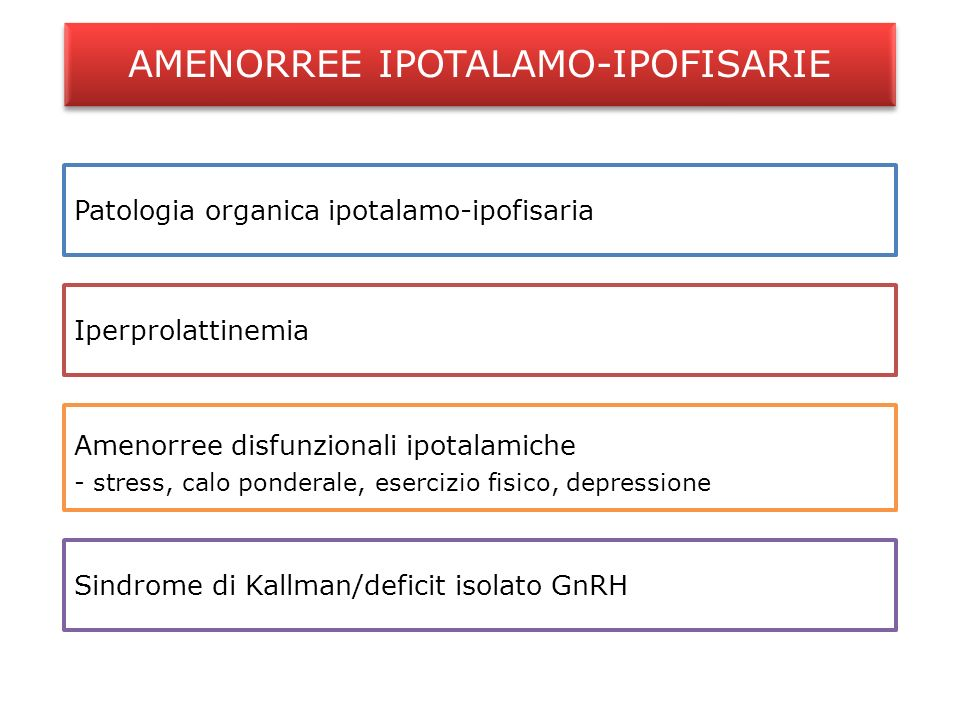 AMENORREE IPOTALAMO-IPOFISARIE