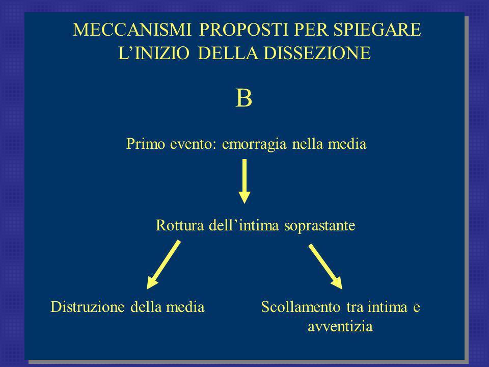 B MECCANISMI PROPOSTI PER SPIEGARE L'INIZIO DELLA DISSEZIONE