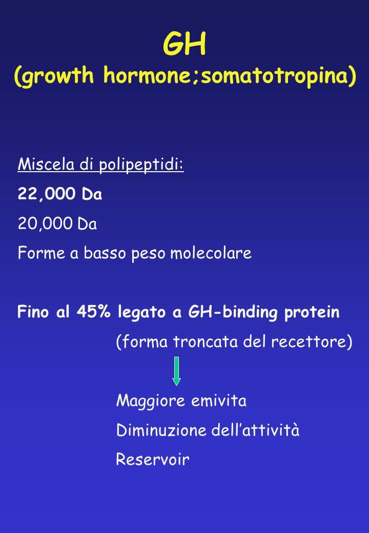 GH (growth hormone;somatotropina)