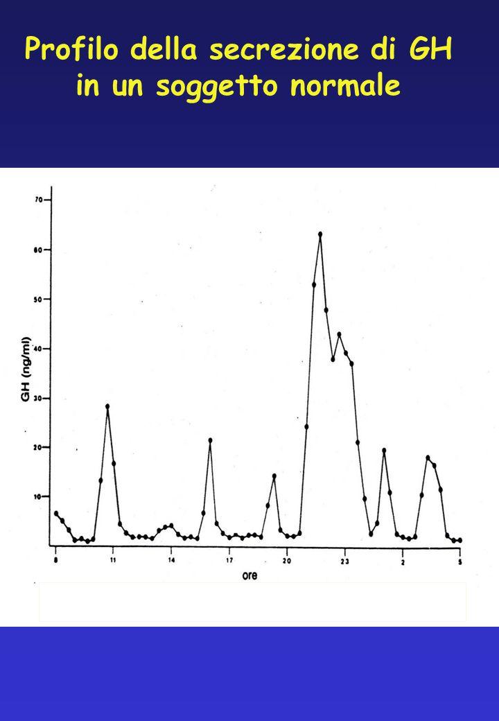 Profilo della secrezione di GH in un soggetto normale