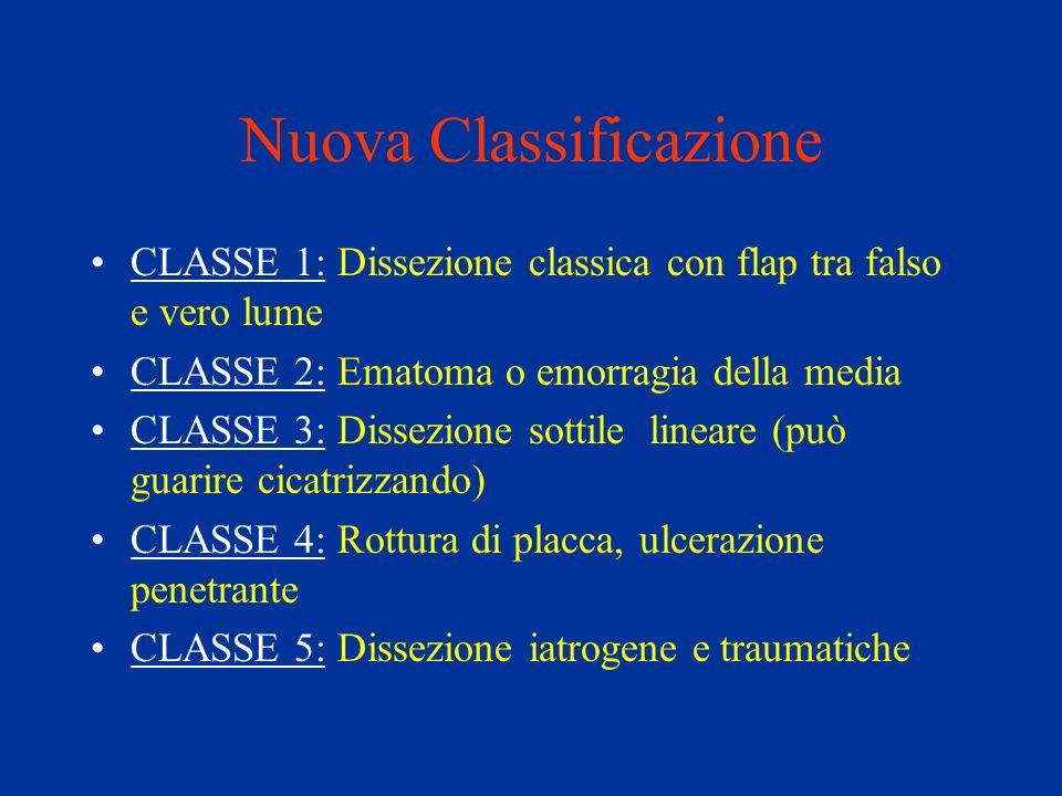 Nuova Classificazione