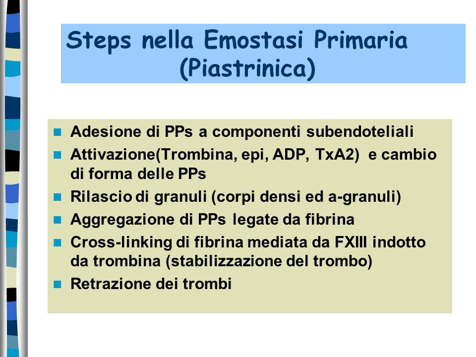 Steps nella Emostasi Primaria (Piastrinica)