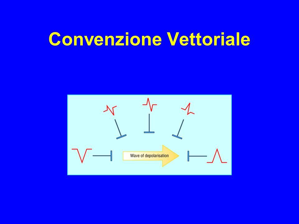 Convenzione Vettoriale
