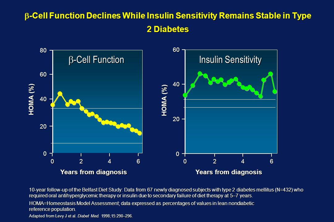 b-Cell Function Insulin Sensitivity