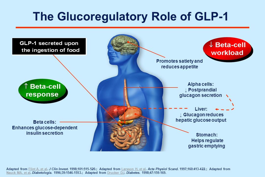 The Glucoregulatory Role of GLP-1