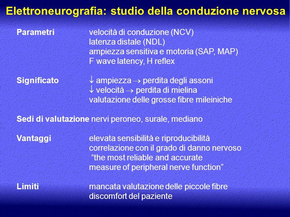Elettroneurografia: studio della conduzione nervosa