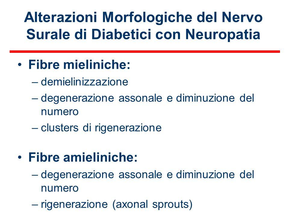 Alterazioni Morfologiche del Nervo Surale di Diabetici con Neuropatia