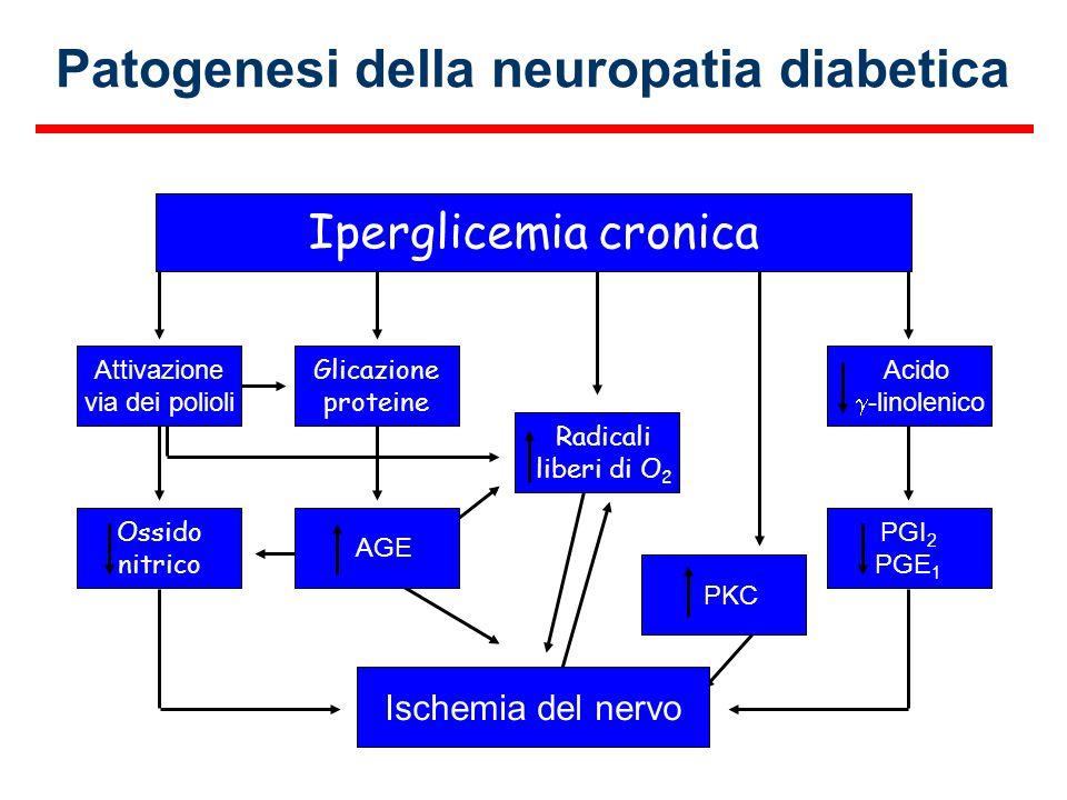 Patogenesi della neuropatia diabetica
