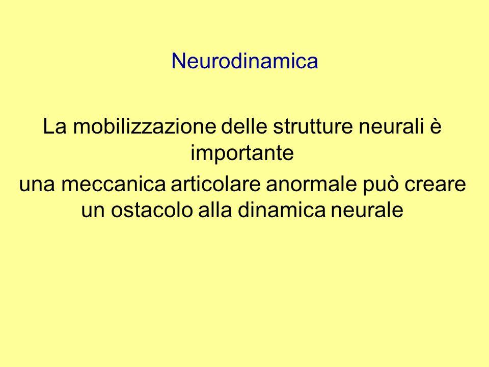 La mobilizzazione delle strutture neurali è importante