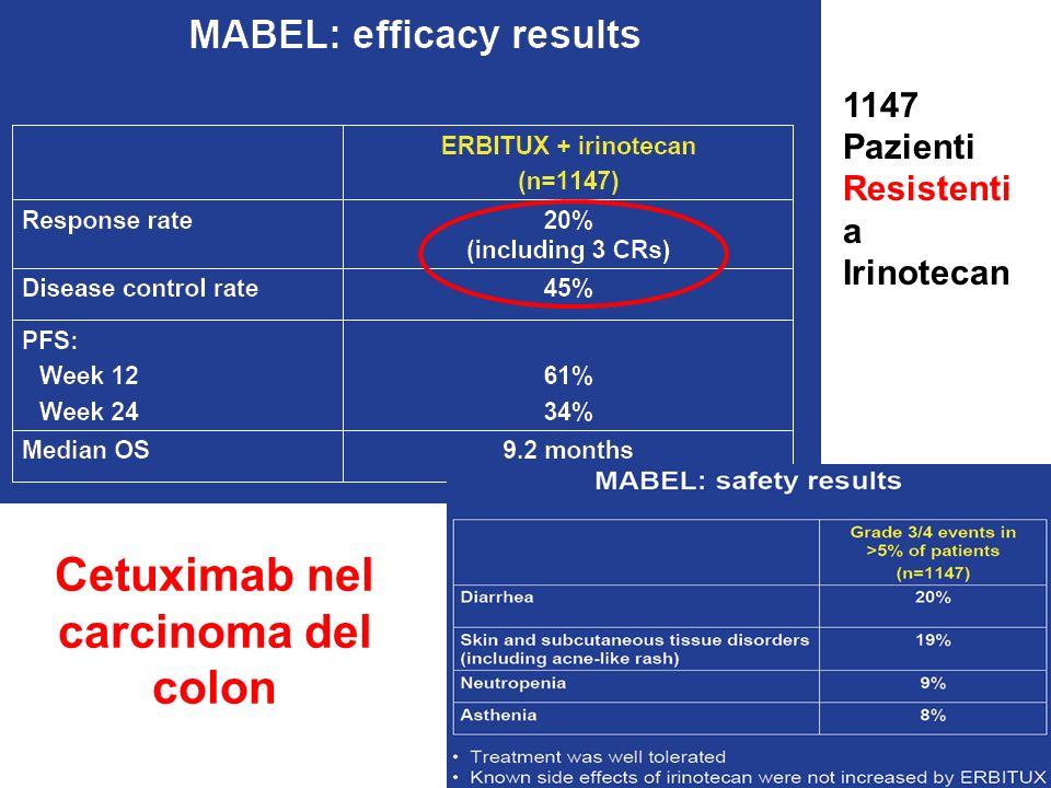 Cetuximab nel carcinoma del colon