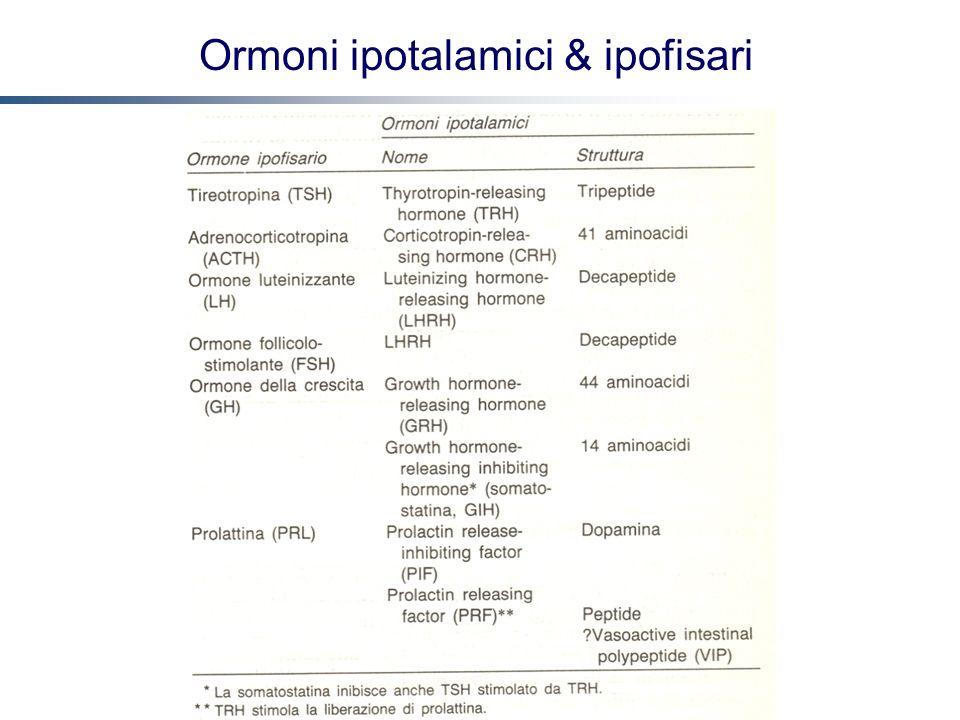 Ormoni ipotalamici & ipofisari