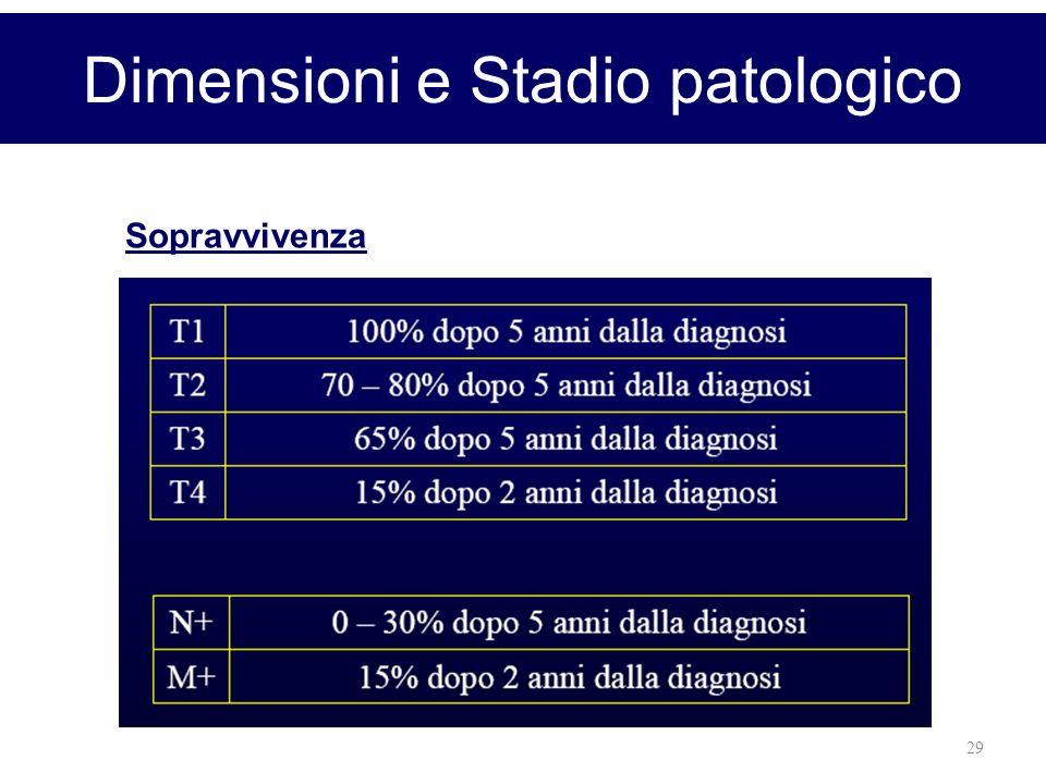 Dimensioni e Stadio patologico