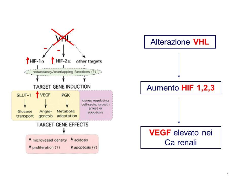 VEGF elevato nei Ca renali