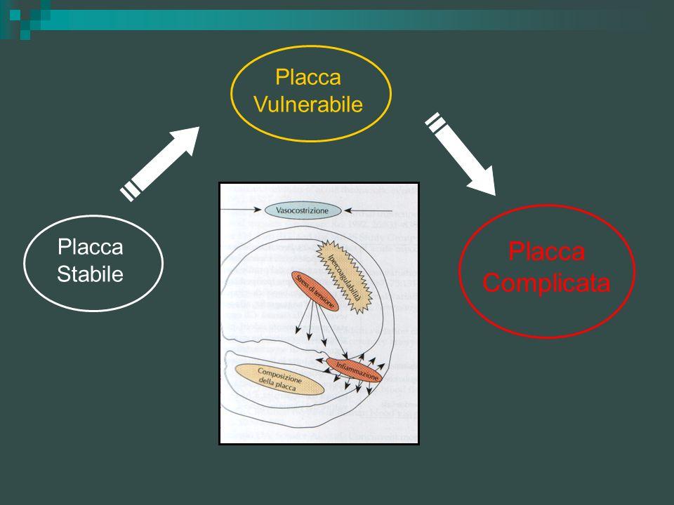 Placca Vulnerabile Placca Stabile Placca Complicata
