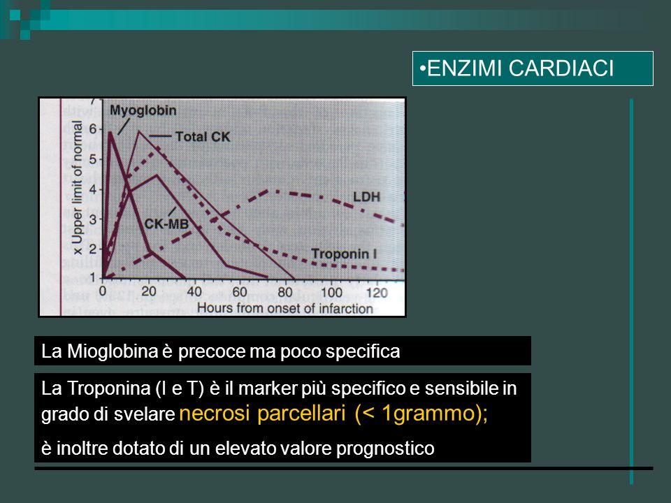 ENZIMI CARDIACI La Mioglobina è precoce ma poco specifica