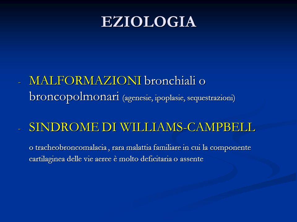 EZIOLOGIA MALFORMAZIONI bronchiali o broncopolmonari (agenesie, ipoplasie, sequestrazioni) SINDROME DI WILLIAMS-CAMPBELL.