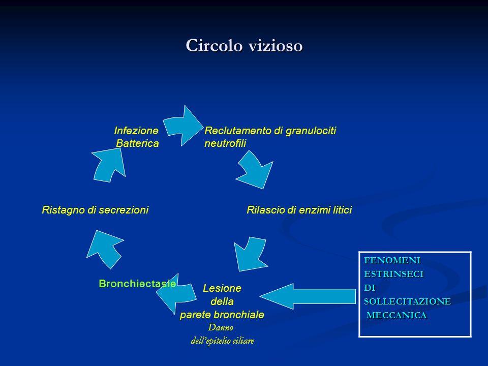 Circolo vizioso FENOMENI ESTRINSECI DI SOLLECITAZIONE MECCANICA