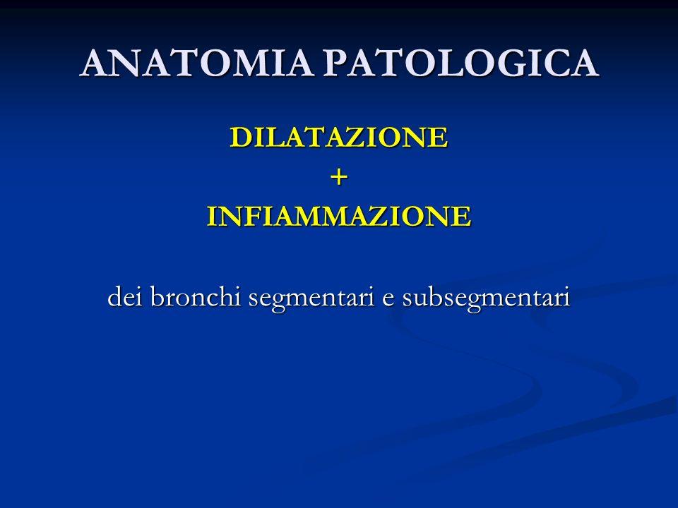 dei bronchi segmentari e subsegmentari