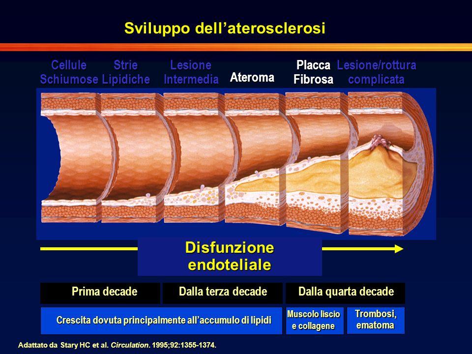 Sviluppo dell'aterosclerosi Disfunzione endoteliale