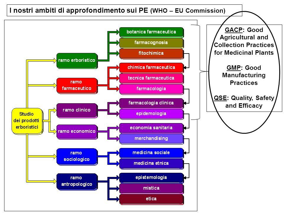 I nostri ambiti di approfondimento sui PE (WHO – EU Commission)