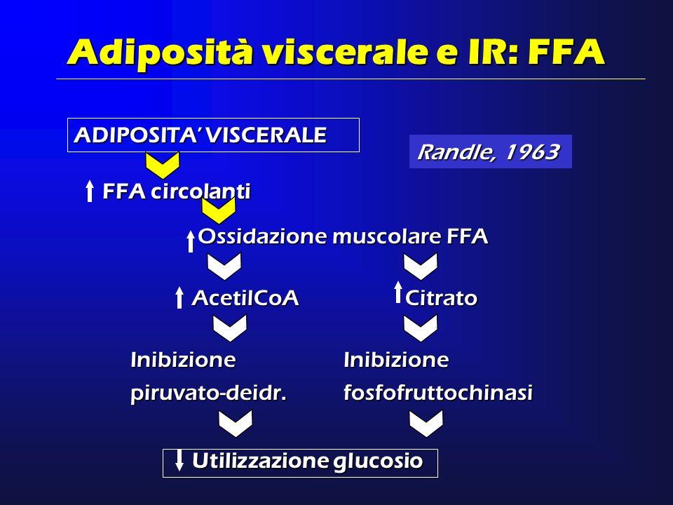 Adiposità viscerale e IR: FFA