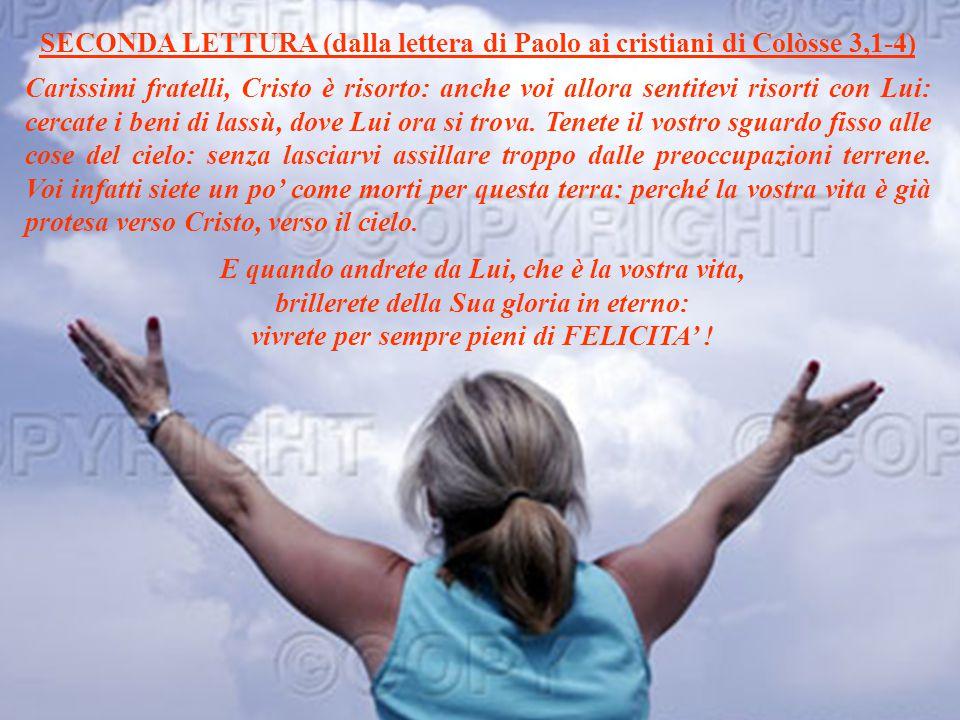 SECONDA LETTURA (dalla lettera di Paolo ai cristiani di Colòsse 3,1-4)