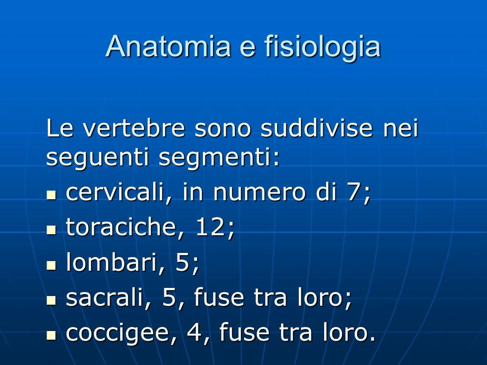 Anatomia e fisiologia Le vertebre sono suddivise nei seguenti segmenti: cervicali, in numero di 7;