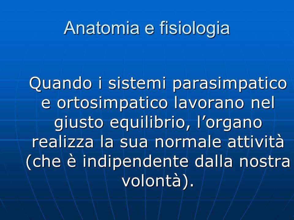 Anatomia e fisiologia