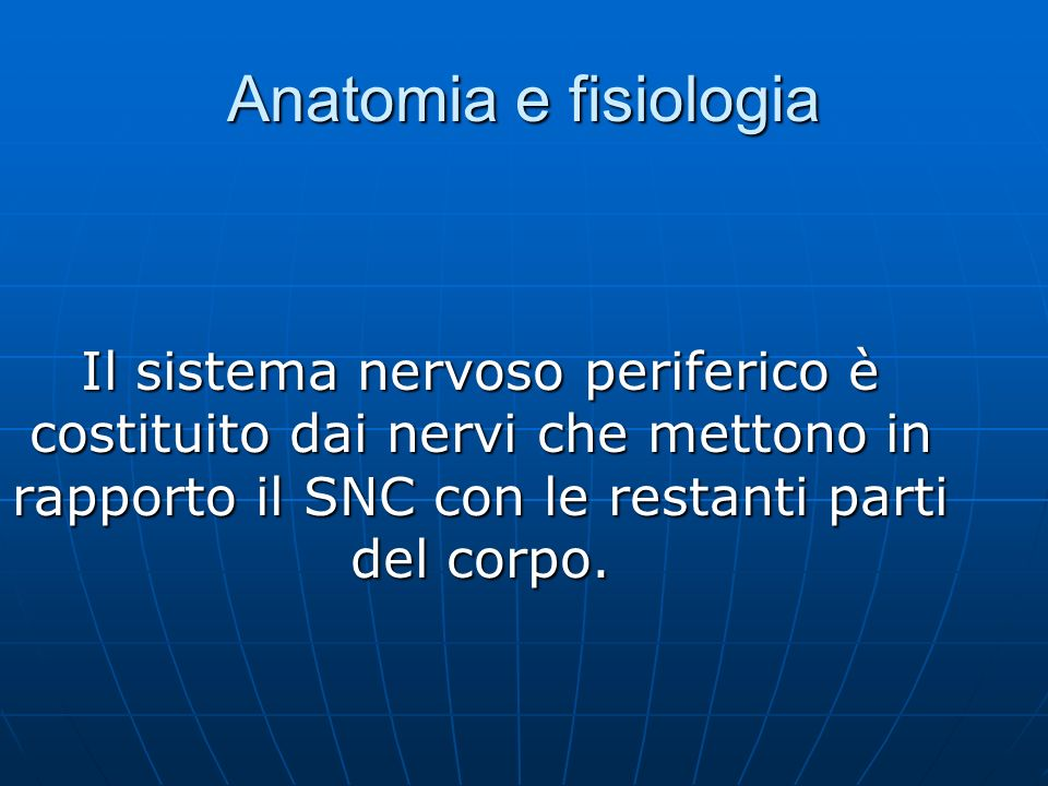 Anatomia e fisiologia Il sistema nervoso periferico è costituito dai nervi che mettono in rapporto il SNC con le restanti parti del corpo.