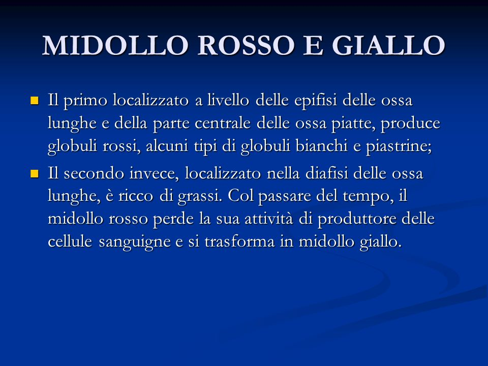 MIDOLLO ROSSO E GIALLO