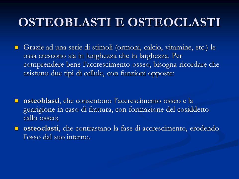 OSTEOBLASTI E OSTEOCLASTI