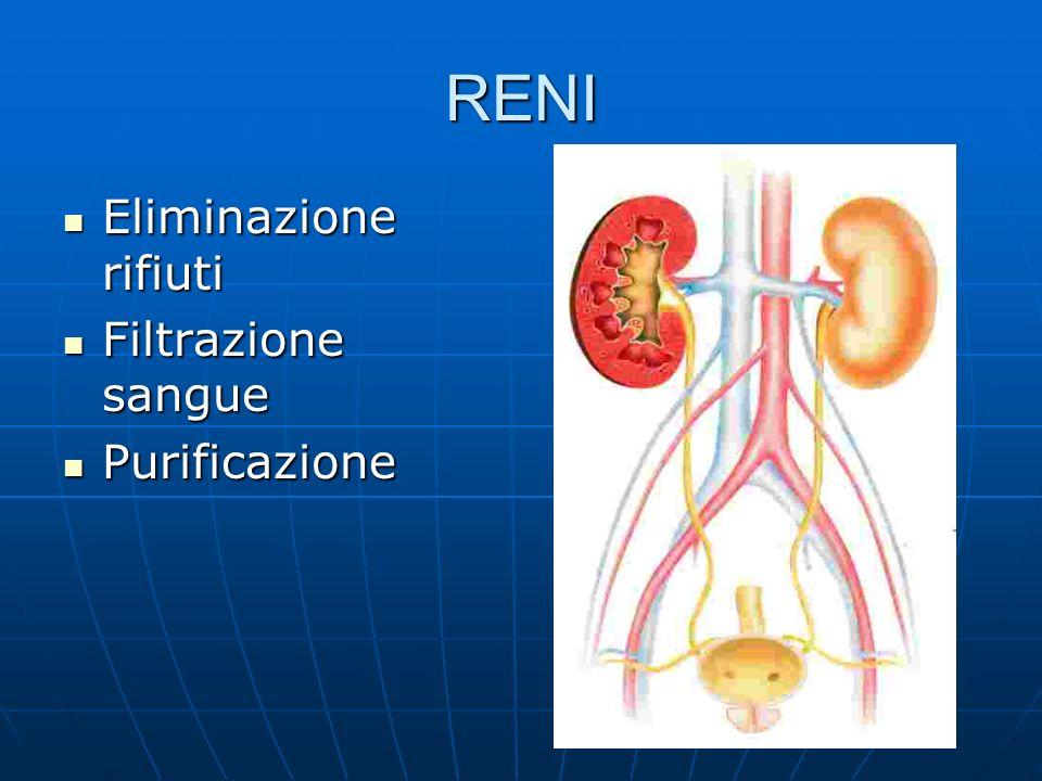 RENI Eliminazione rifiuti Filtrazione sangue Purificazione