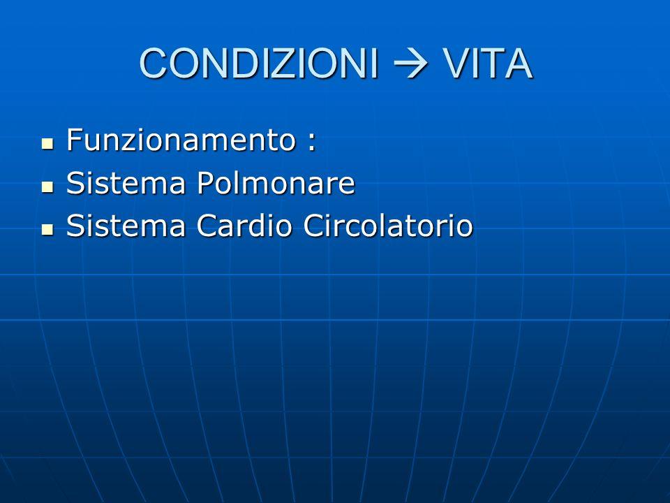 CONDIZIONI  VITA Funzionamento : Sistema Polmonare