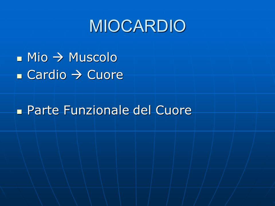 MIOCARDIO Mio  Muscolo Cardio  Cuore Parte Funzionale del Cuore