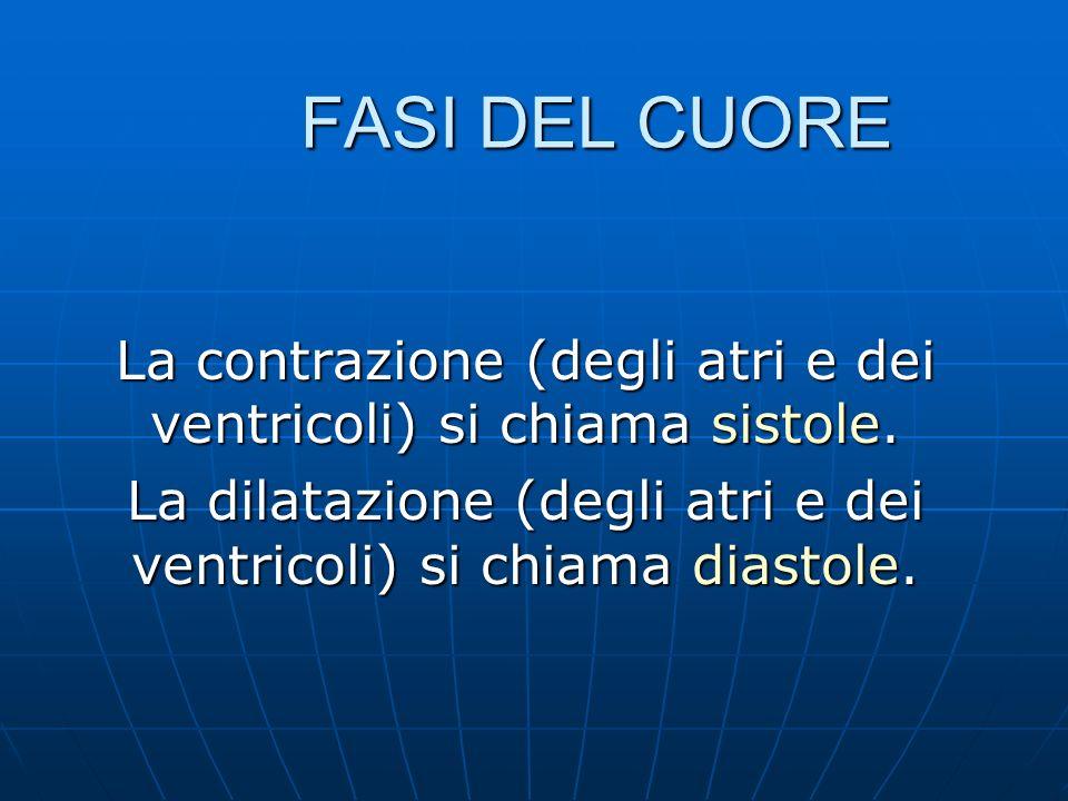 FASI DEL CUORE La contrazione (degli atri e dei ventricoli) si chiama sistole.