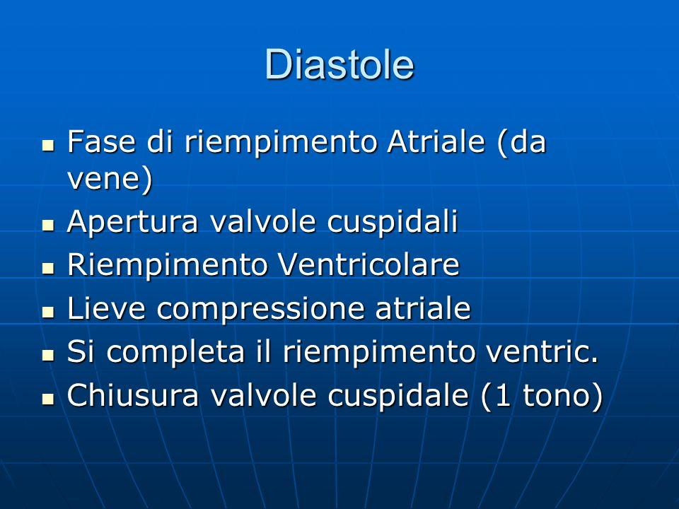 Diastole Fase di riempimento Atriale (da vene)
